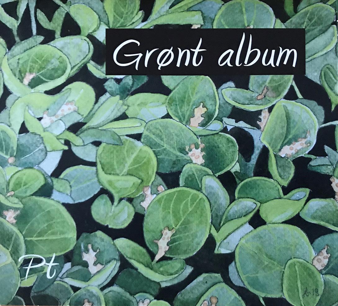 Pt: Grønt album (omslag)