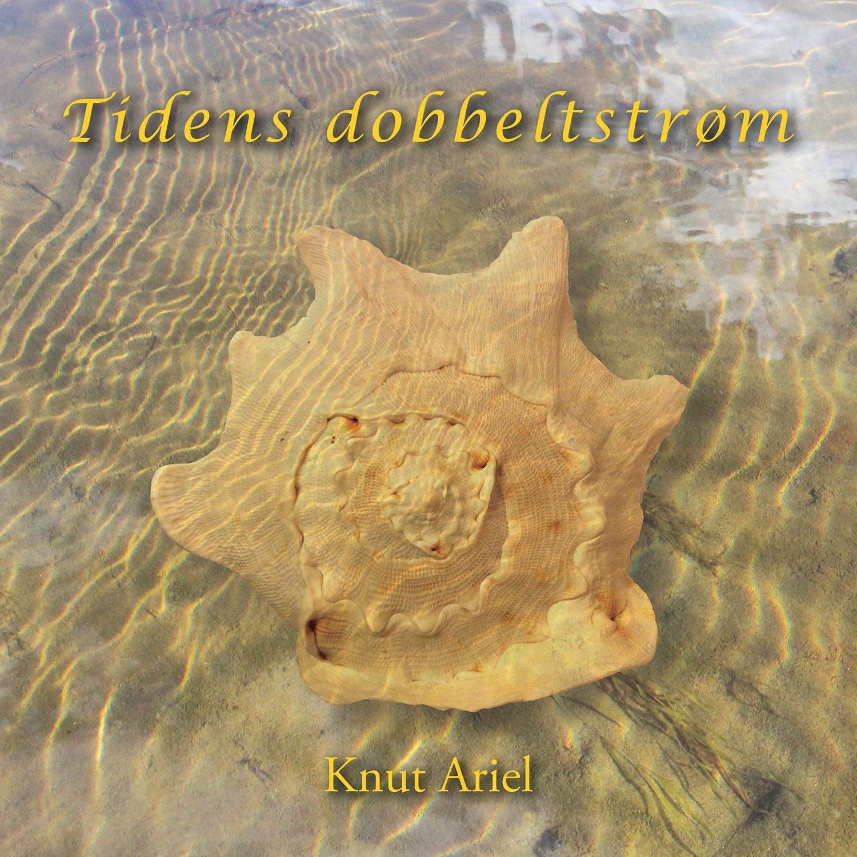 Ariel: Tidens dobbeltstrøm CD-omslag